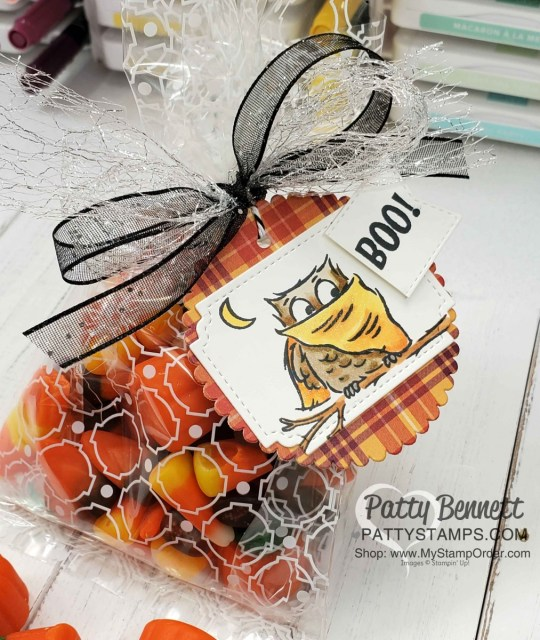 Halloween Treat Idea: Stampin' UP! Have a Hoot bundle owls colored with Stampin' Blends. Mosaic Cello Bag. www.PattyStamps.com