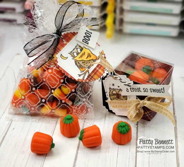 Halloween Treat Idea: Stampin' UP! Have a Hoot bundle owls colored with Stampin' Blends. Mosaic Cello Bag and Clear Square Treat box. www.PattyStamps.com