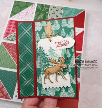 3 Easy Fun Fold Card Ideas with video!