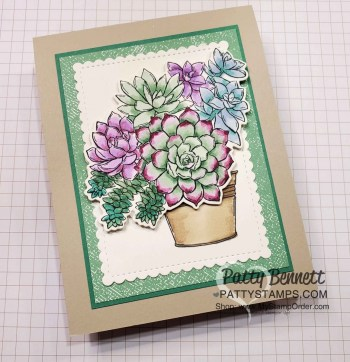 Stampin' Blends Coloring with Simply Succulents