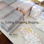 Packaging Paper Shares for the Jan-June 2021 Stampin