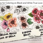 3 ways to color on the Stampin