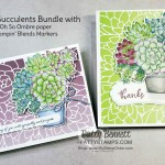 Potted Succulents dies from the Stampin