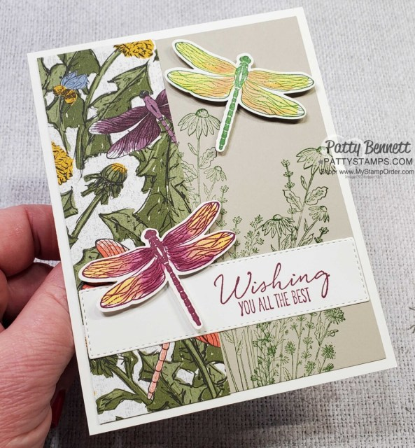 Dragonfly card idea featuring Stampin' Up! Dandy Garden suite, Dragonflies punch and Stampin' Blends coloring by Patty Bennett