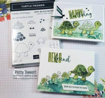 Turtle Friends Cards with Biggest Wish Greetings