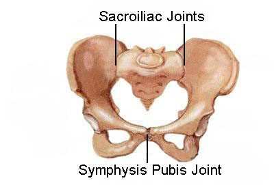 Pelvic Girdle Pain (PGP) or Symphysis Pubis Dysfunction