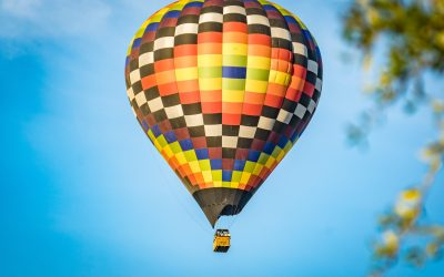 Hot Air Balloons?  Not For This Chicken…