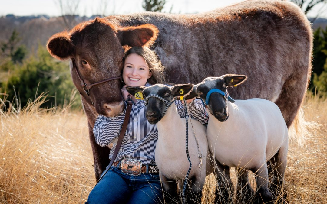 Gather Up Your Furry Friends and Schedule a Photo Session