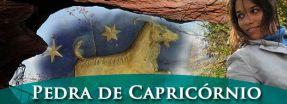 pedra do signo de capricórnio