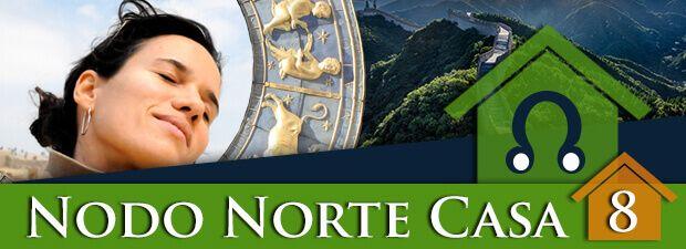 nodo norte casa 8