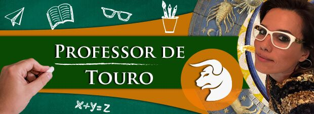 professor de touro