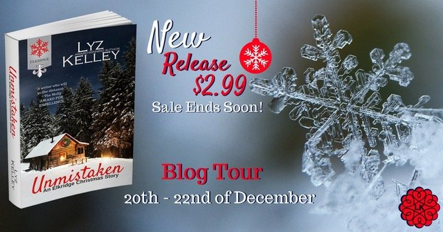 Tour Banner for Unmistaken by Lz Kelley