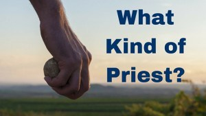 What Kind of Priest-