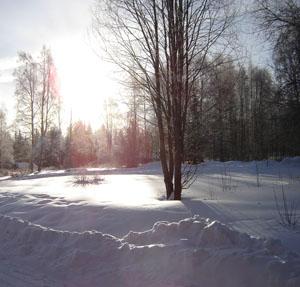 februarisol