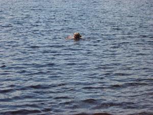 jag simmar!