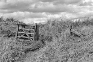 Broken gate in dunes, Beadnell