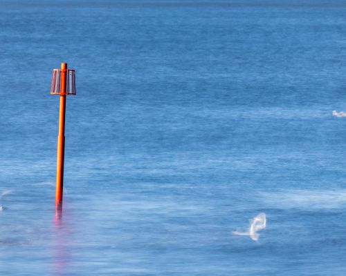 Marker post and seagulls