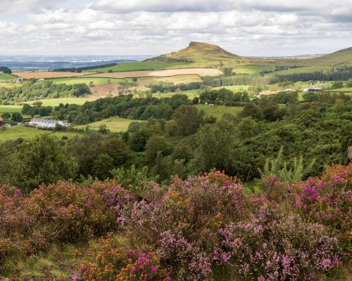 Roseberry Topping Pano