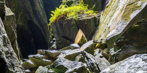 Angular Rock