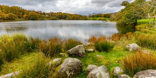 Rock at Loughrigg