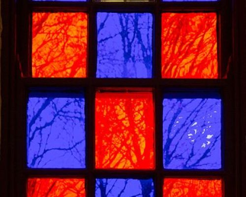 Trees through Stained Glass