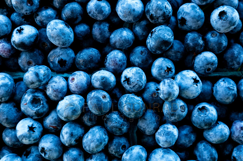 © Paul Conrad/Pablo Conrad Photography - Blueberries lit by the open sky at a farmers market in Skagit County.