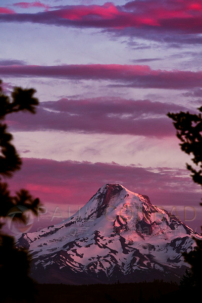 © Paul Conrad/Pablo Conrad Photography - The setting Sun bathes Mt. Hood in alpenglow as seen from Hood River, Ore.