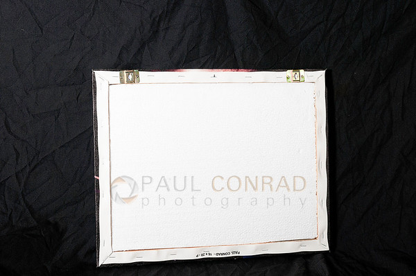 © Paul Conrad - The foam backing on the print made by Canvas Champ.
