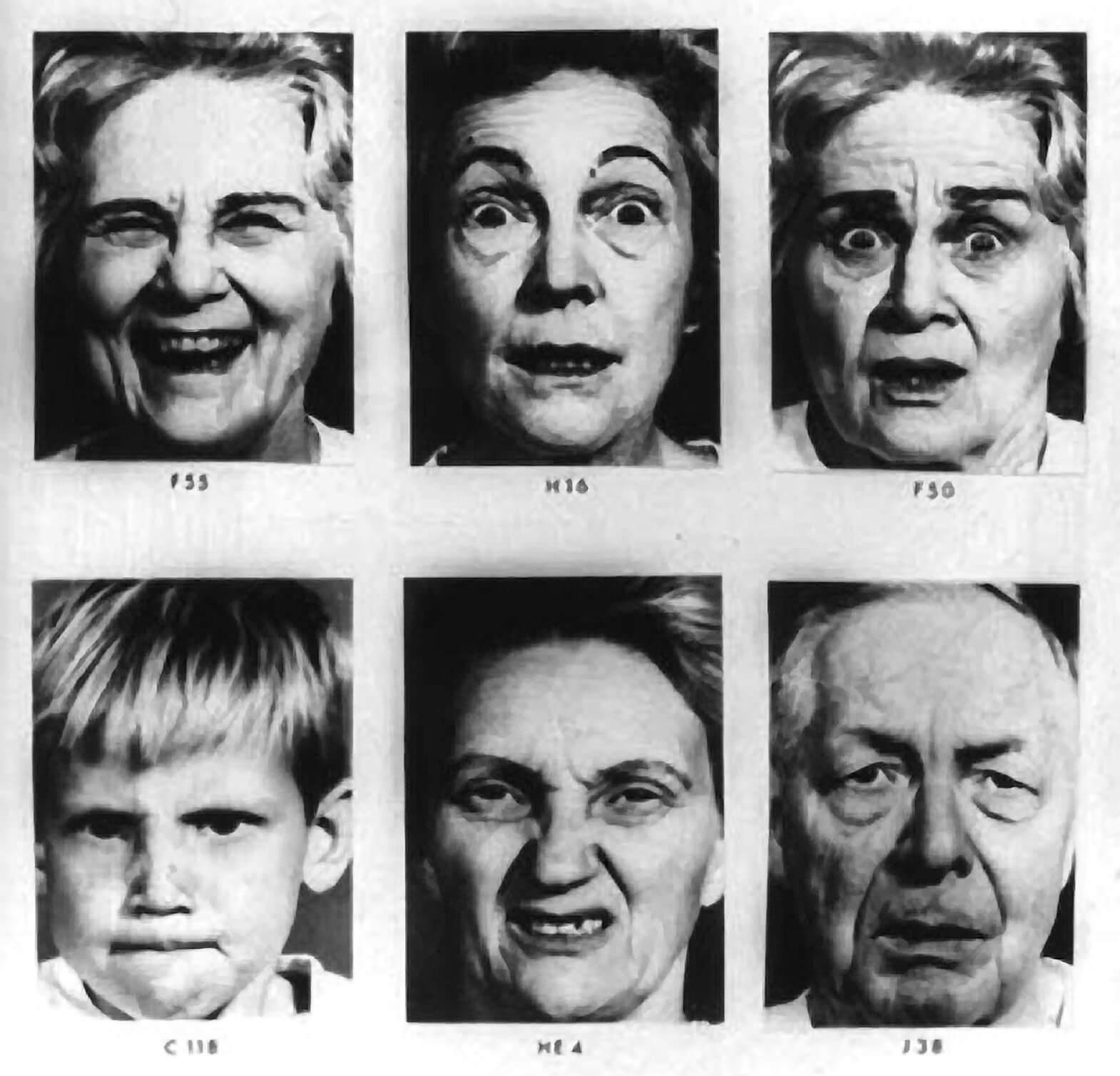 Interpret Facial Expressions