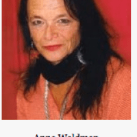 Anne Waldman - Vow to Poetry (2002 Interview)