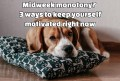Midweek monotony? 3 ways to keep yourself motivated right now