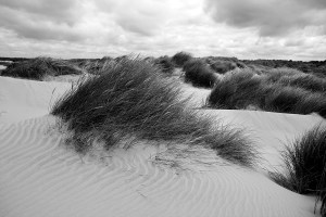 Formby Sand Dunes Black and White Landscape Photograph Coastal Landscapes Black and White
