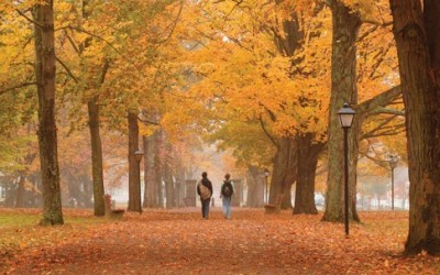 In Pictures: The World's Most Beautiful College Campuses via @forbes