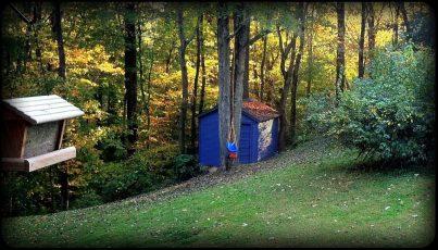 Beautiful fall day - backyard view of Daniel's swing