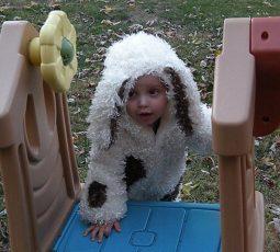 Daniel's Halloween: Dogs in the Yard