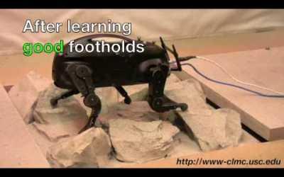 Amazing and Freaky Video of 'LittleDog' Robot