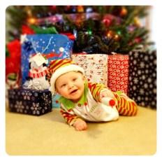 Lily is Santa's little helper!