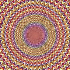 Stop Moving!! (Illusion)