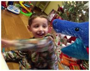 Daniel survives a shark attack