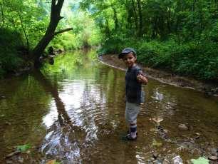Creek Critter Splash