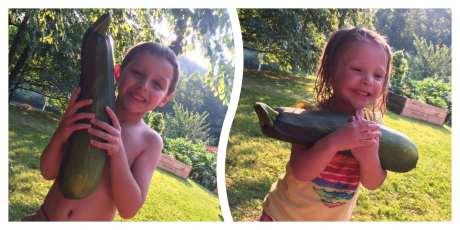 Kristen's monster zucchini!!!