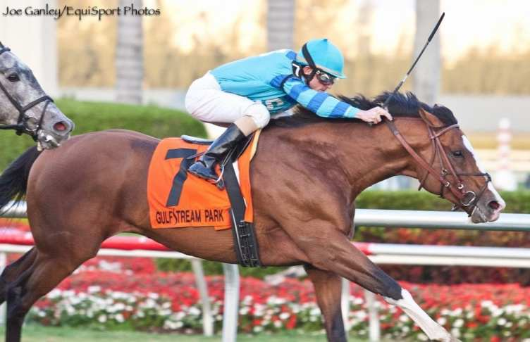Get Stormy thunders home to win the Gulfstream Park Turf ...