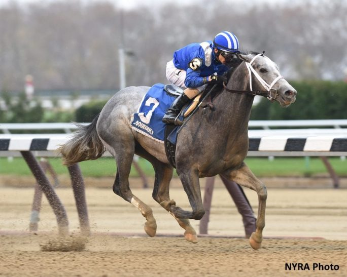Mohaymen Continues Preparations For Holy Bull With
