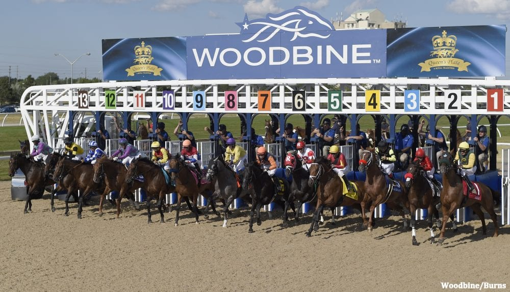 Woodbine Customers Will Soon Have Access To Loadhub