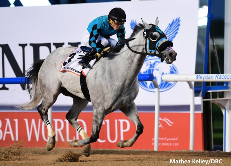 Third Time S The Charm X Y Jet Delivers In Dubai Golden