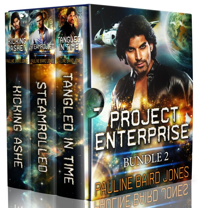 Book Cover: Project Enterprise Bundle 2