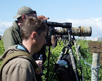 Photography is transforming British birdwatching