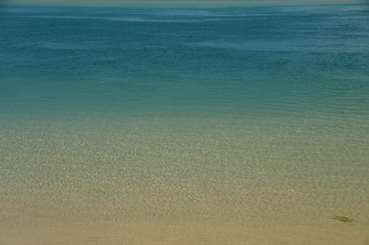 Surat bay sea