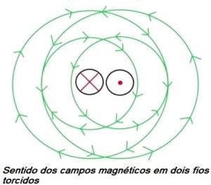 Fig. 11 - Sentido do campo no fio torcido