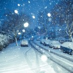 Altruism and information deficits: What snowstorms teach us about economics